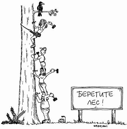 Шипування дерев