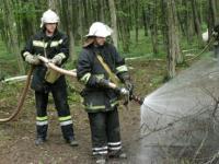 Пожежі в Поліському заповіднику
