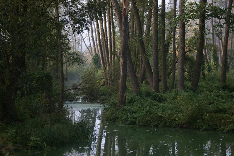 Ічнянський національний парк. Фото Сергія Гладкевича