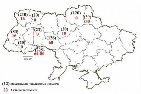 Динаміка чисельності зубра в Україні по регіонам