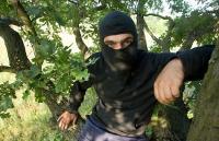 Лесные братья. Чтобы спасти деревья от вырубки, киевлянин Евгений загоняет в стволы 10-сантиметровые гвозди. Процедура называется шипованием