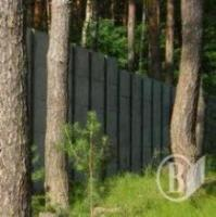 forest-fences
