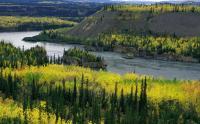 2 февраля — Всемирный день водно-болотных угодий
