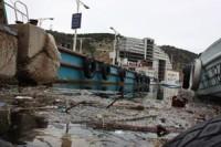 Балаклавская бухта встречает курортников мусором и трупами дельфинов