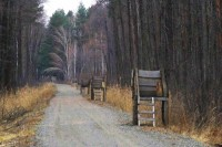 Мисливські угіддя Януковича повинні стати природними парками, – екологи