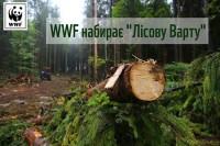 WWF запускаэ проект Лісова вартаа