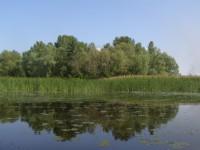 12-06-10 Заказник Процівський.Фото А.Плиги