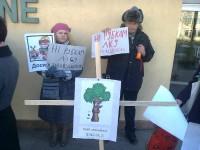 екологісти вимагають заборонити рубки у природних заповідниках
