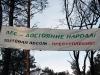 Вирубка лісу поблизу селища Лісники