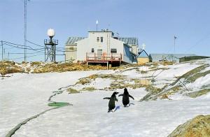 Будівлі української антарктичної станції «Академік Вернадський». Фото з альбому «XX років НАНЦ»