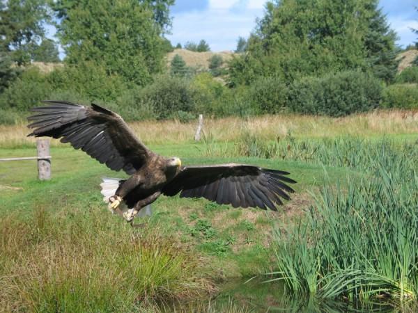 Фото з сайту photobucket.com
