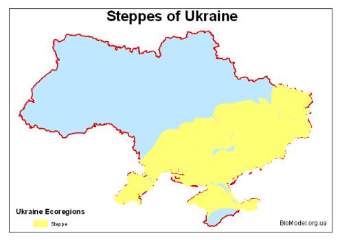 Steppes_ua