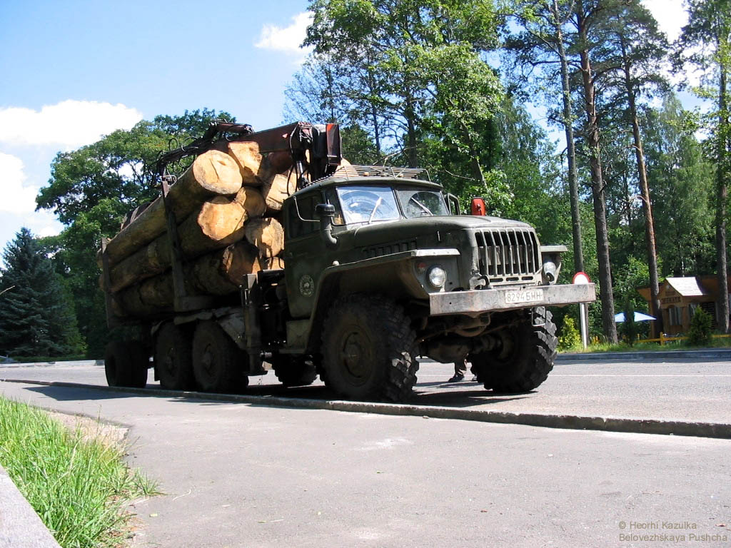 http://pryroda.in.ua/wp-content/uploads/2008/05/bpwh27.jpg