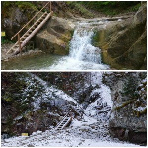 """На Буковині, щоб вивозити ліс, знищили водоспад """"Ворота"""", який входить до ТОП природних """"чудес України""""."""